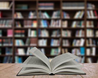 Педагогическое образование: педагог-библиотекарь