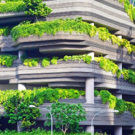 Экологическая безопасность на строительных объектах мегаполиса