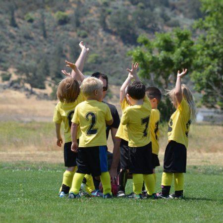 Теория и методика физического воспитания в системе дошкольного образования