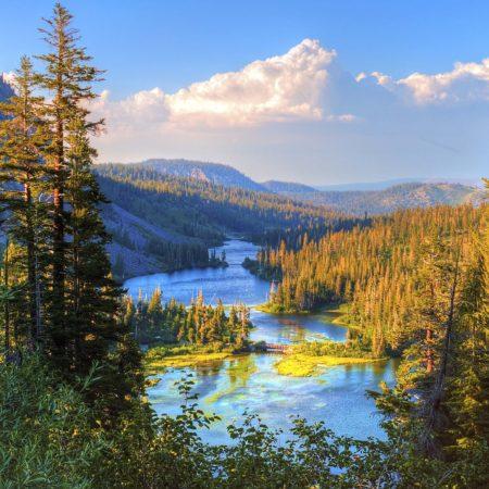 Реформа экологического законодательства – переход на новую систему государственного экологического контроля и надзора