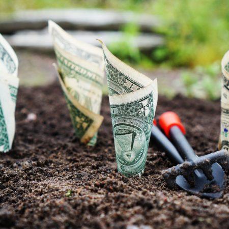 Организация оплаты и нормирования труда